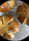 リッチな生地の くるみパン