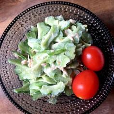 常備菜!デリシャスゴーヤとツナのサラダ