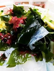 氷上の海藻サラダの写真