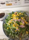 もやしと豆苗の中華サラダ