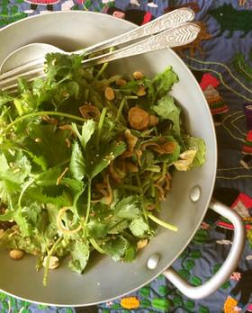 香草のサラダ