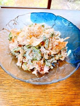 ゴーヤとポテトチップスのサラダ