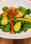 糖質制限★えごまの葉と何でも野菜のサラダ