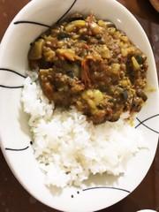 キーマ風 夏野菜 カレーの写真