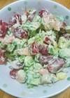 彩り◎簡単美味しいエビアボカドサラダ