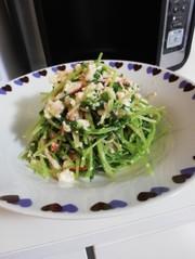 豆苗と豆腐のナムルサラダの写真