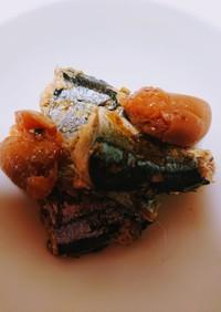 簡単秋刀魚の梅煮‼️
