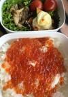 手作りイクラ丼弁当♪