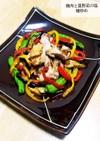 鶏肉と夏野菜の塩麹炒め