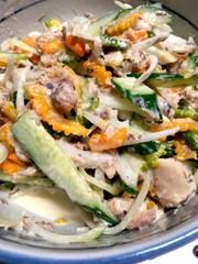 サバ水煮缶とゴーヤのサラダの写真