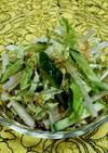 ビタミンCたっぷりの白菜サラダ♡超時短♪