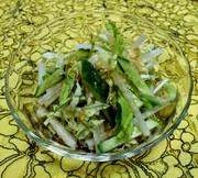 ビタミンCたっぷりの白菜サラダ♡超時短♪の写真