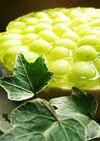 シャインマスカット✨2層レアチーズケーキ