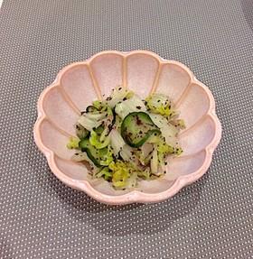 簡単浅漬☆白菜とキュウリのゆかり漬け