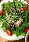 鯖缶とパクチーのサラダ