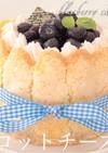 シャルロットブルーベリーチーズケーキ