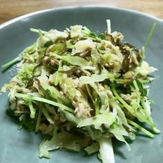 豆苗とキャベツの塩こぶサラダ