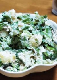 四角豆~大きくなっちゃったうりずんサラダ