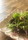 キクラゲと赤茎水菜の中華サラダ