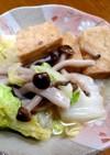 厚揚げと白菜としめじのほっこり煮物