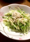 豆苗と切り干し大根のサラダ~柚子胡椒~