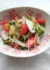 シーフードと貝割れのガーリックサラダ