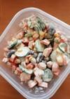 ストック野菜サラダ