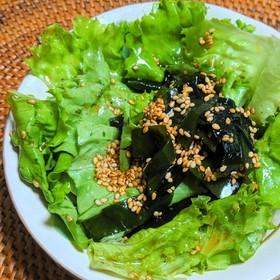 レタスとワカメの中華風サラダ