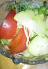 ハヤトウリと柿入りサラダ