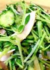 豆苗とハムの中華サラダ