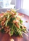 簡単!豆苗とシーチキンと鰹節の和風サラダ