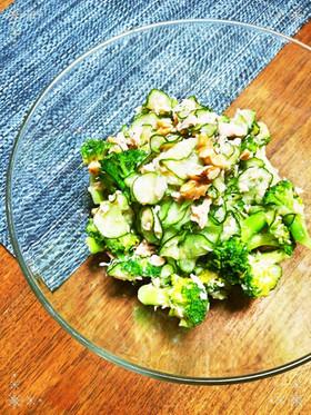 ブロッコリーきゅうりサラダ