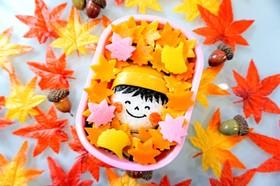 秋 紅葉づくし弁当 ニット帽の女の子