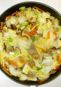 中華風野菜炒め♪簡単白菜豚肉ひき肉