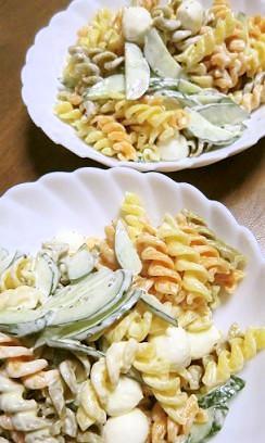 モッツァレラチーズ入りマカロニサラダ