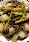 白菜と牛肉の旨煮
