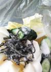 カブ、きゅうり、白菜の塩昆布浅漬け
