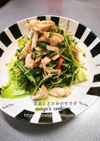 【作り置き】豆苗とささみのサラダ