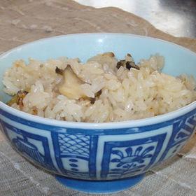 今、旬のトコブシで海の松茸ご飯
