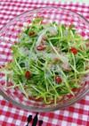 豆苗と春雨のアジアンチックサラダ