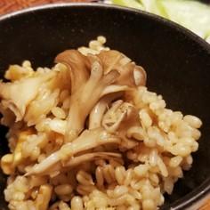 【薬膳レシピ】くるみ&生姜きのこ麦ごはん
