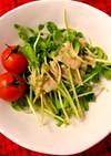 忙しい朝に♡豆苗の超簡単サラダ