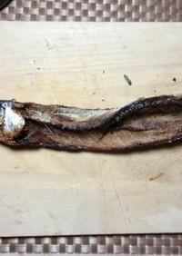 トビウオからの焼きアゴ