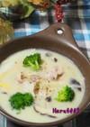 豚肉と長ネギ、キノコの味噌豆乳スープ