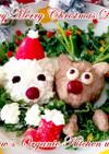 メリーメリークリスマスディナー☆犬ごはん