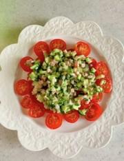 トマトの具だくさんドレッシングサラダの写真