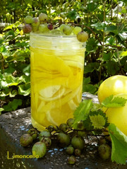 リモンチェッロ酒の写真