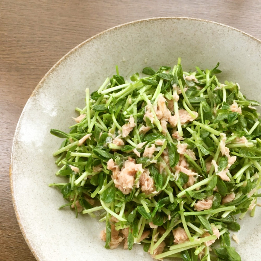 豆苗とツナのサラダ