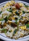 大根の葉のマヨネーズ風炒飯