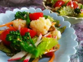 冬野菜のカラフルサラダ